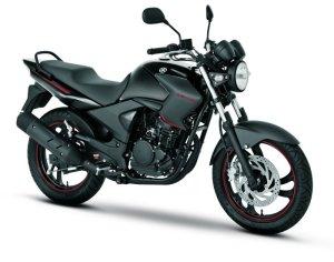 Salah satu jenis Road Bike, Yamaha Fazer 250 cc